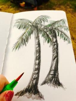 Waikiki palm trees